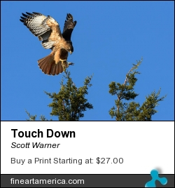 Touch Down by Scott Warner - Photograph - Photo