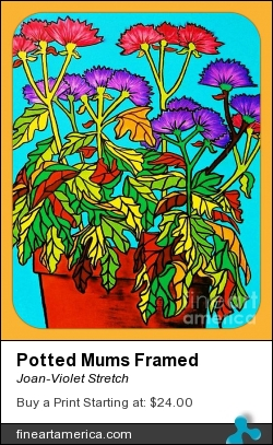 Potted Mums Framed by Joan-Violet Stretch - Painting - Acrylics On Canvas Board