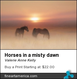 Horses In A Misty Dawn by Valerie Anne Kelly - Mixed Media - Photography