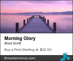 Morning Glory by Brad Scott - Photograph - Photography