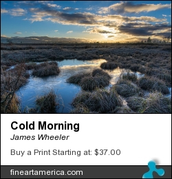 Cold Morning by James Wheeler - Photograph