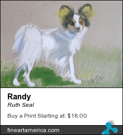 Randy by Ruth Seal - Painting - Colored Pencil