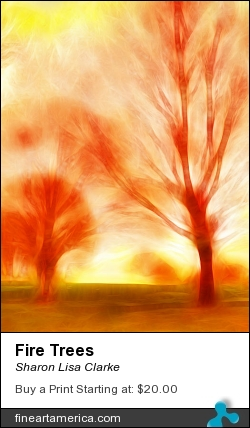 Fire Trees by Sharon Lisa Clarke - Photograph - Photography
