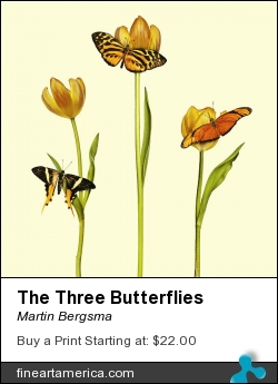 The Three Butterflies by Martin Bergsma - Photograph - Photo