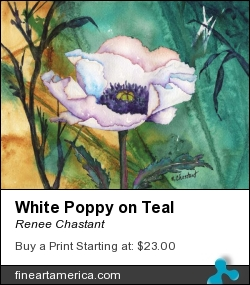 White Poppy On Teal by Renee Chastant - Painting - Watercolor On Paper
