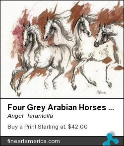 Four Grey Arabian Horses Ink Painting 2014 04 25 by Angel  Tarantella - Painting - Ink Painting