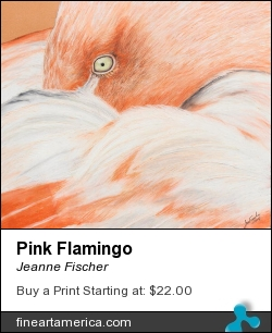 Pink Flamingo by Jeanne Fischer - Painting