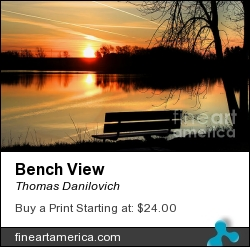 Bench View by Thomas Danilovich - Photograph