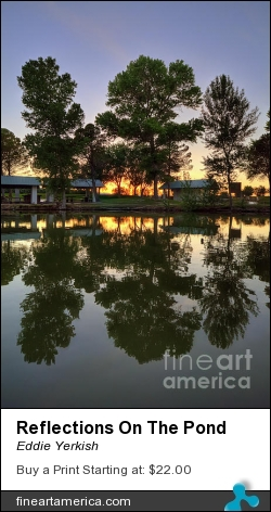 Reflections On The Pond by Eddie Yerkish - Photograph