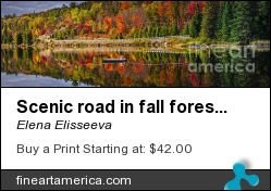 Scenic Road In Fall Forest by Elena Elisseeva - Photograph - Photograph