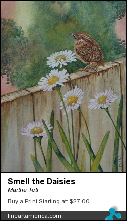 Smell The Daisies by Martha Teti - Painting - Watercolor
