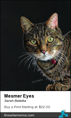 Mesmer Eyes by Sarah Batalka - Painting - Prismacolor Colred Pencils On Canson Black Paper