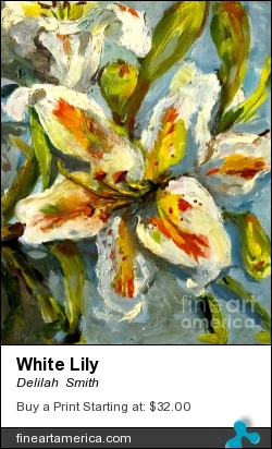 White Lily by Delilah  Smith - Painting - Oil Painting
