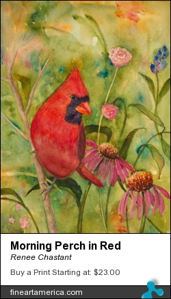 Morning Perch In Red by Renee Chastant - Painting - Watercolor On Paper