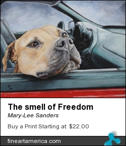 The Smell Of Freedom by Mary-Lee Sanders - Painting - Acrylic On Canvas