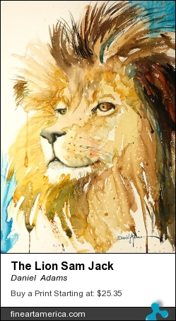 The Lion Sam Jack by Daniel  Adams - Painting - Watercolor