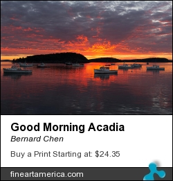 Good Morning Acadia by Bernard Chen - Photograph
