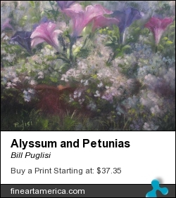 Alyssum And Petunias by Bill Puglisi - Painting - Pastel On Canson Paper