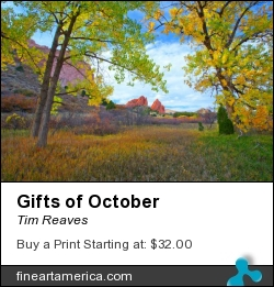 Gifts Of October by Tim Reaves - Photograph