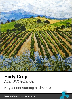 Early Crop by Allan P Friedlander - Painting - Acrylic On Gallery Wrapped Canvas
