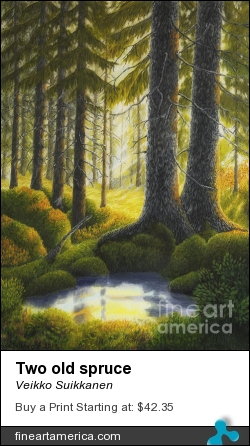 Two Old Spruce by Veikko Suikkanen - Painting - Oil On Canvas