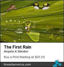 The First Rain by Angela A Stanton - Painting - Painting And Photo Collage