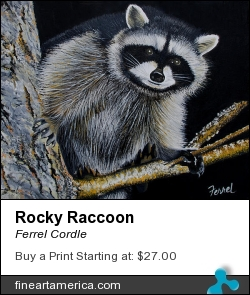 Rocky Raccoon by Ferrel Cordle - Painting