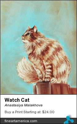Watch Cat by Anastasiya Malakhova - pastels on paper