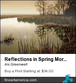 Reflections In Spring Morning by Iris Greenwell - Photograph - Photography