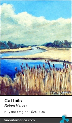 Cattails by Robert Harvey - Painting - Oil On Plywood