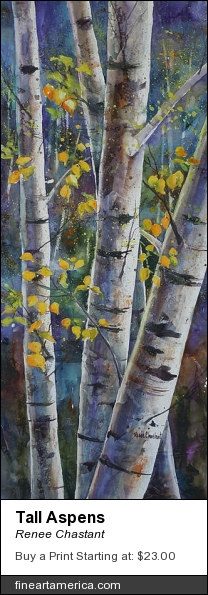 Tall Aspens by Renee Chastant - Painting - Watercolor On Paper