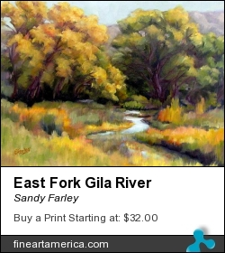 East Fork Gila River by Sandy Farley - Painting - Oils