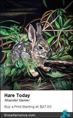 Hare Today by Shandel Gamer - Pastel - Limited Edition Giclee Print