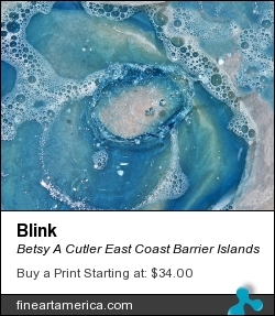 Blink by Betsy A Cutler East Coast Barrier Islands - Photograph - Fine Art Photography
