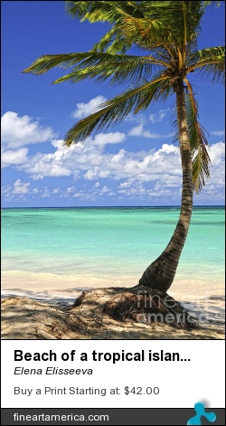 Beach Of A Tropical Island by Elena Elisseeva - Photograph - Photograph