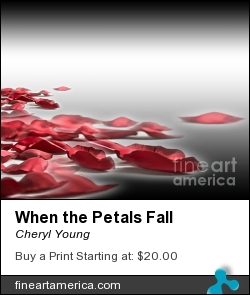 When The Petals Fall by Cheryl Young - Photograph - Photography