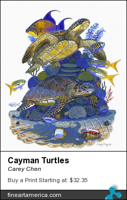 Cayman Turtles by Carey Chen - Painting - Acrylic On Paper