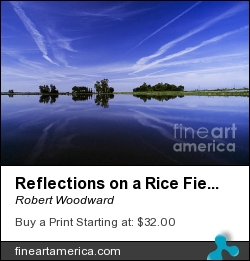 Reflections On A Rice Field by Robert Woodward - Photograph - Digital Photograph