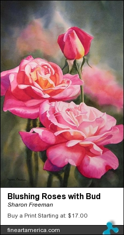 Blushing Roses With Bud by Sharon Freeman - Painting - Watercolor On Paper