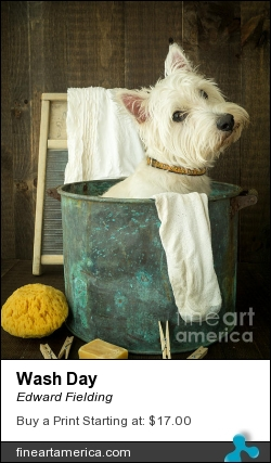 Wash Day by Edward Fielding - Photograph - Photography