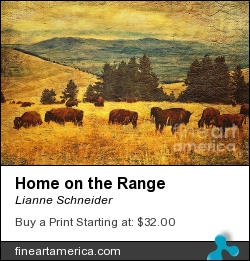 Home On The Range by Lianne Schneider - Digital Art - Digital Painting/photographic Art