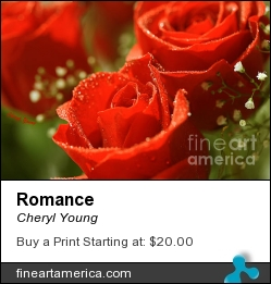 Romance by Cheryl Young - Photograph - Photography,digital Art,digital Editing