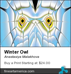 Winter Owl by Anastasiya Malakhova - fractal art