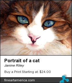 Portrait Of A Cat by Janine Riley - Painting