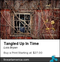 Tangled Up In Time by Lois Bryan - Photograph - Photography / Digital Art