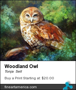 Woodland Owl by Tonja  Sell - Painting - Oil On Canvas