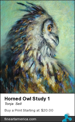 Horned Owl Study 1 by Tonja  Sell - Pastel - Pastel Drawing On Paper