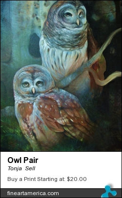 Owl Pair by Tonja  Sell - Painting - Oil On Canvas