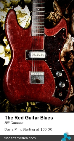 The Red Guitar Blues by Bill Cannon - Photograph - Photo