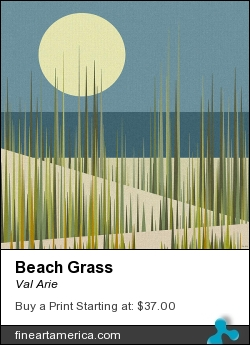 Beach Grass by Val Arie - Digital Art - Digital Paint